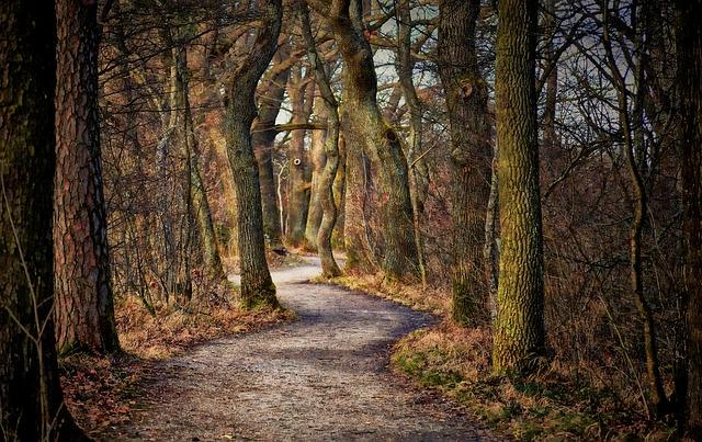 Der Weg zu Demut und Einheit am Beispiel Jesu Christi
